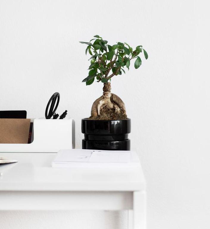 Move over minimalism, digital detox is here