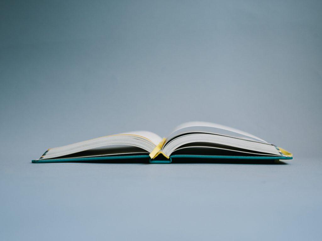 Trigg Life Mapper Mindfulness Book