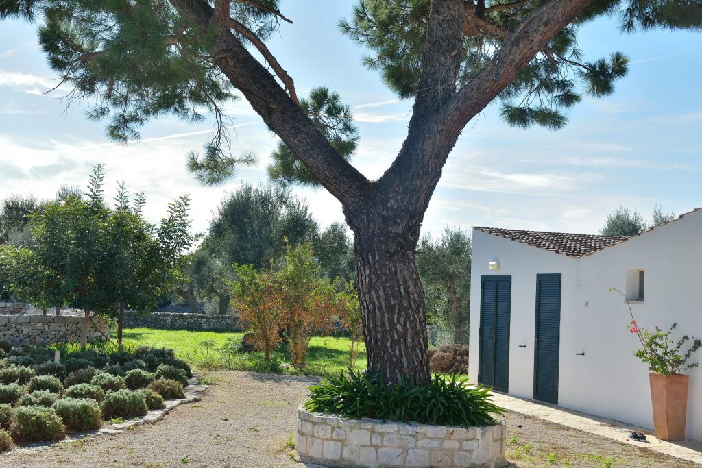 Italy Digital Detox Retreat