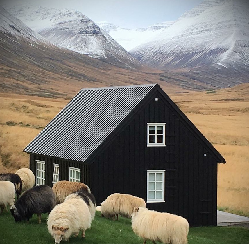 accommodation digital detox retreat to Iceland