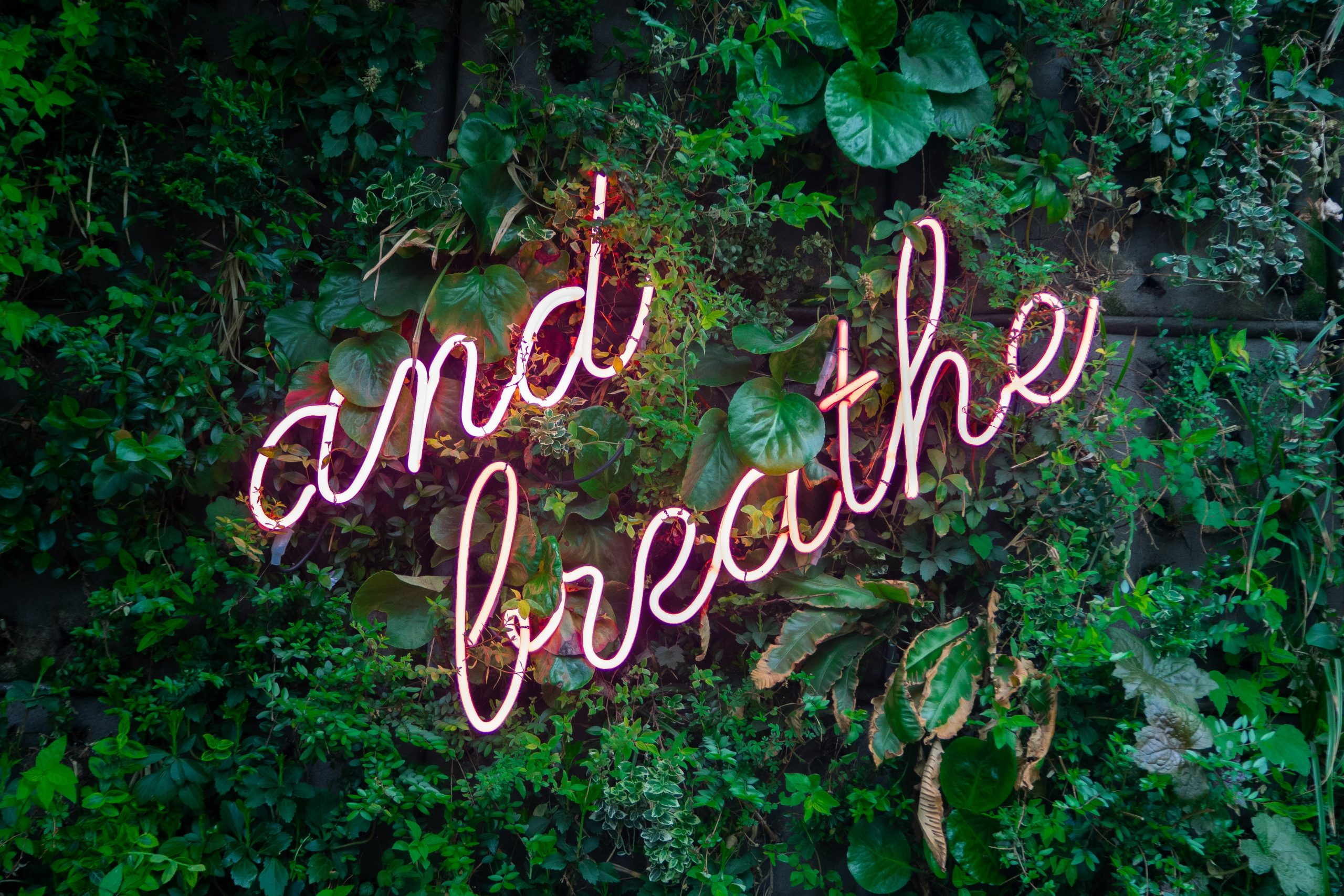 digital wellbeing: and breathe